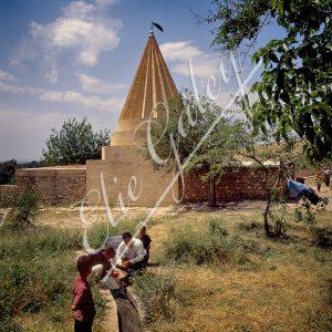 Temple Yezidi