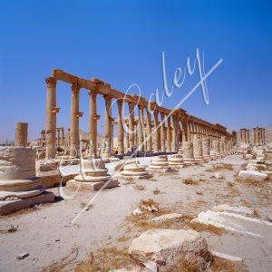 Citadelle de Zenobie