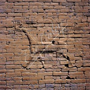 Palais de Nabuchodonosor
